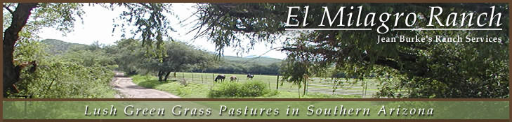 El Milagro Ranch